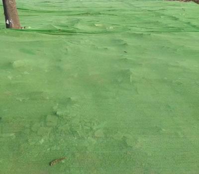 绿色盖土网图